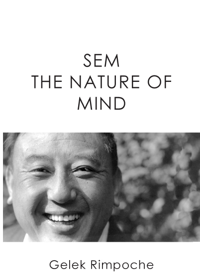 SEM – The Nature of Mind