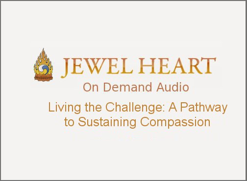 Living the Challenge: A Pathway to Sustaining Compassion