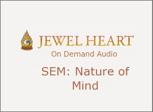 SEM: Nature of Mind