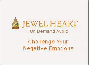 Challenge Your Negative Emotions