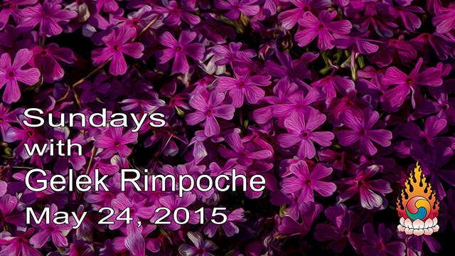 Sundays with Gelek Rimpoche 16