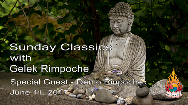 Classic Sundays – Guest Demo Rinpoche 01