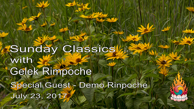 Classic Sundays – Guest Demo Rinpoche 02