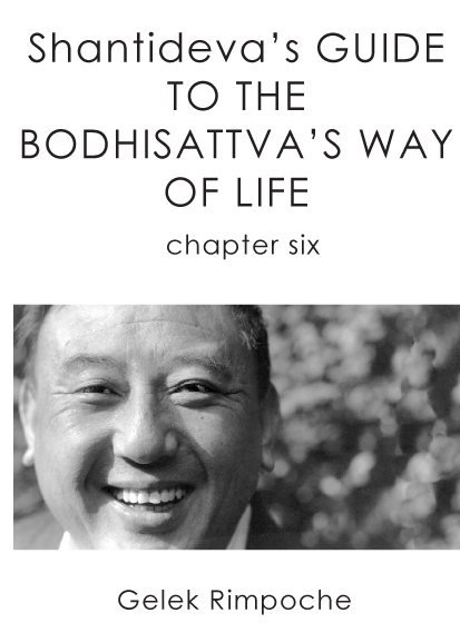 Bodhisattva's Way of Life Chapter 6