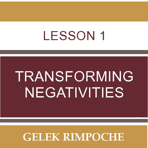 Lesson 1: Transforming Negativities