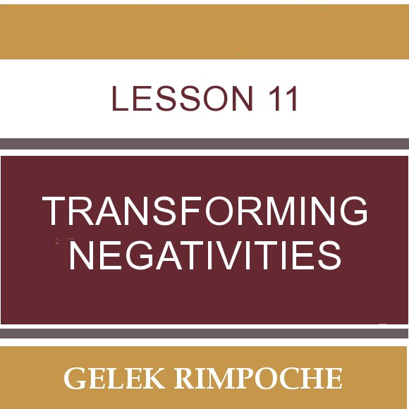 Lesson 11: Transforming Negativities
