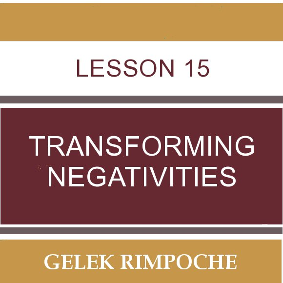 Lesson 15: Transforming Negativities
