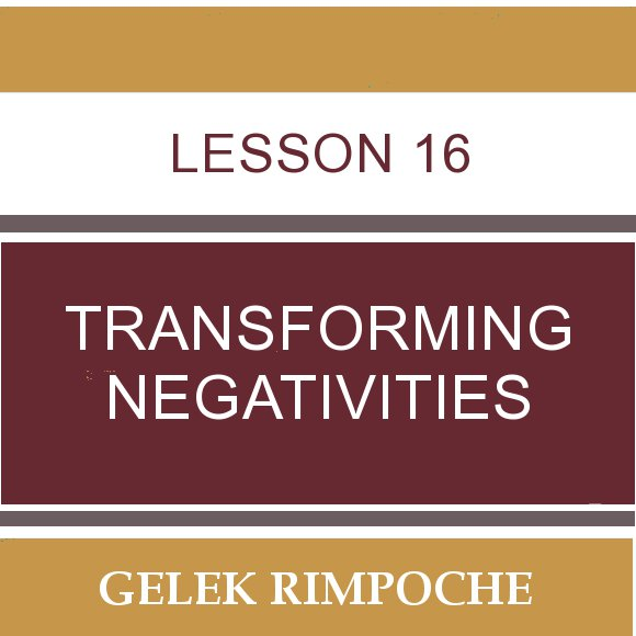 Lesson 16: Transforming Negativities