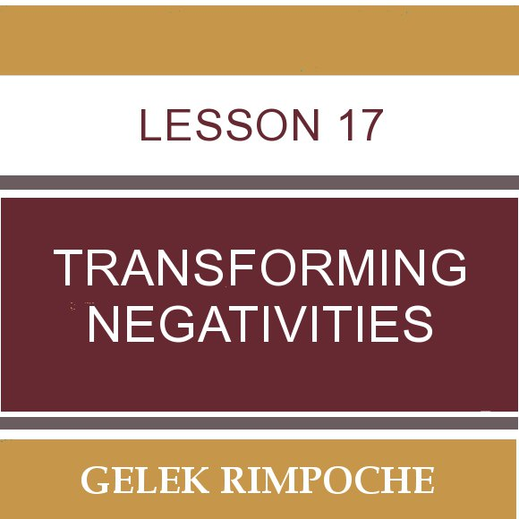 Lesson 17: Transforming Negativities