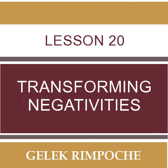 Lesson 20: Transforming Negativities