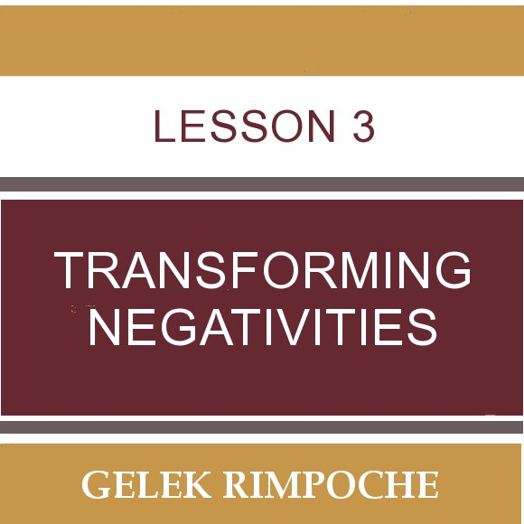 Lesson 3: Transforming Negativities