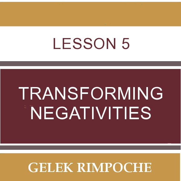 Lesson 5: Transforming Negativities