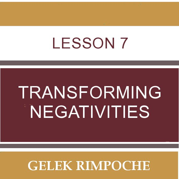 Lesson 7: Transforming Negativities