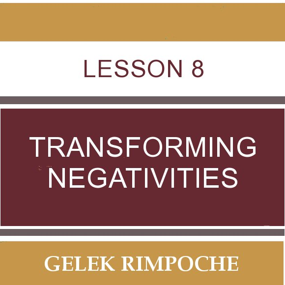 Lesson 8: Transforming Negativities