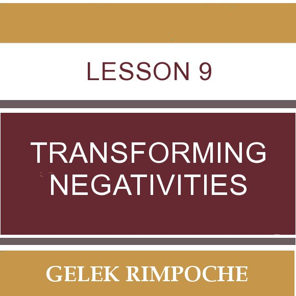 Lesson 9: Transforming Negativities