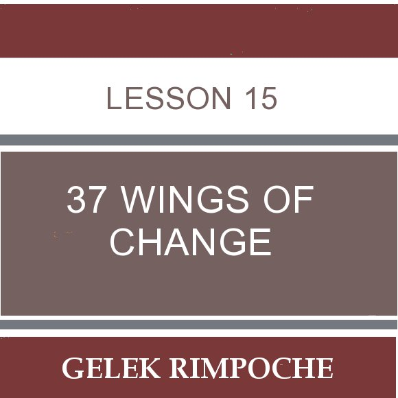 Lesson 15: 37 Wings of Change
