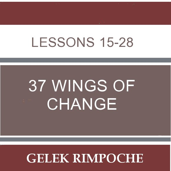 37 Wings of Change: Lessons 15-28