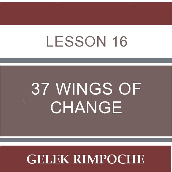 Lesson 16: 37 Wings of Change