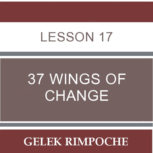 Lesson 17: 37 Wings of Change