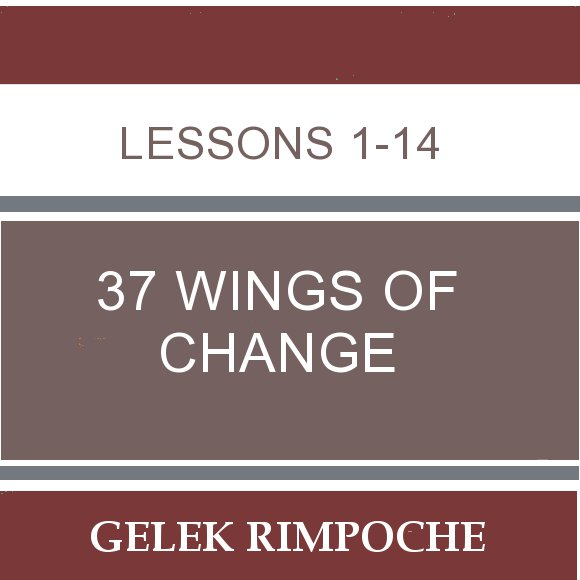 37 Wings of Change: Lessons 1-14