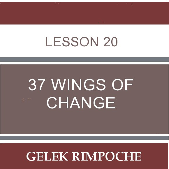 Lesson 20: 37 Wings of Change