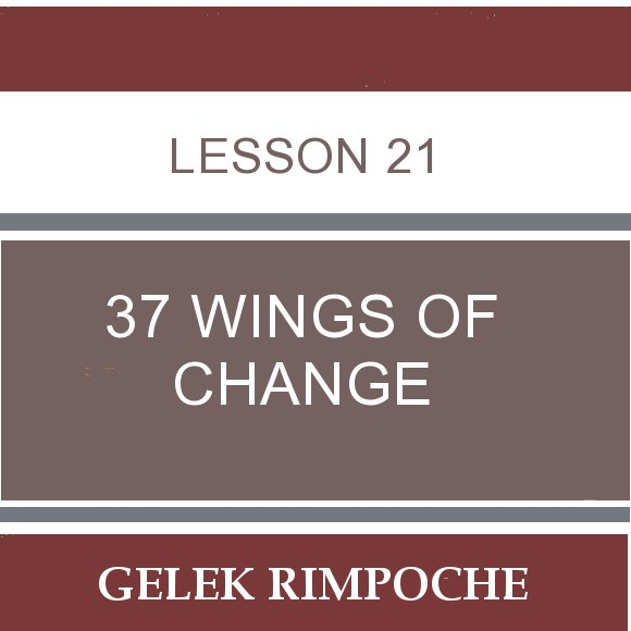Lesson 21: 37 Wings of Change