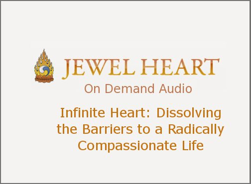 Infinite Heart: Dissolving the Barriers to a Radically Compassionate Life