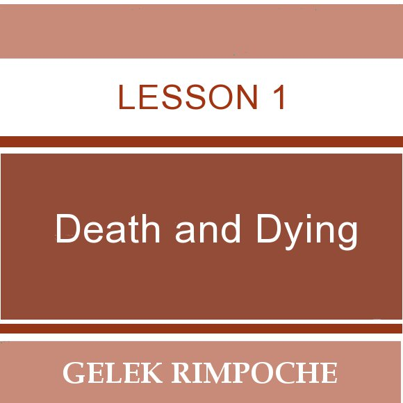 Lesson 1: Death and Dying