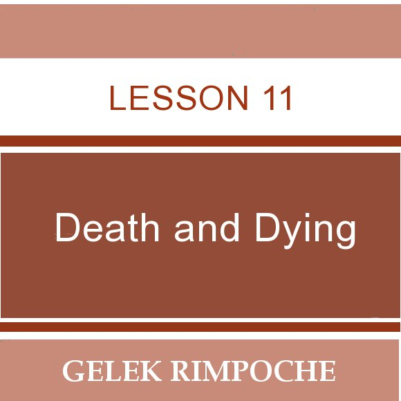 Lesson 11: Death and Dying
