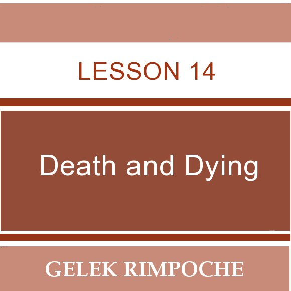 Lesson 14: Death and Dying
