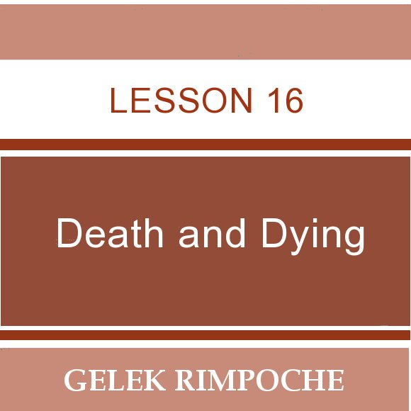 Lesson 16: Death and Dying