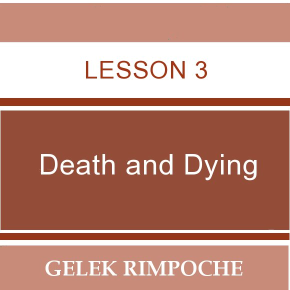 Lesson 3: Death and Dying