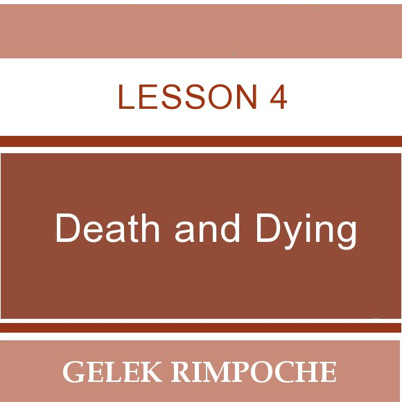 Lesson 4: Death and Dying