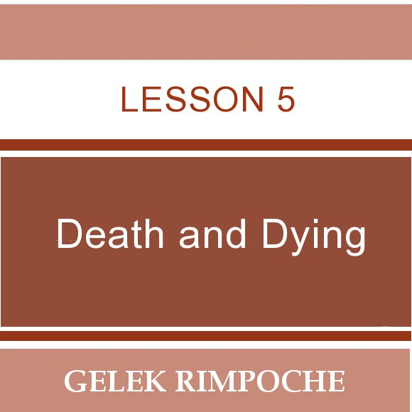 Lesson 5: Death and Dying