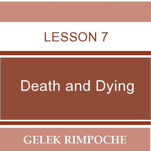 Lesson 7: Death and Dying
