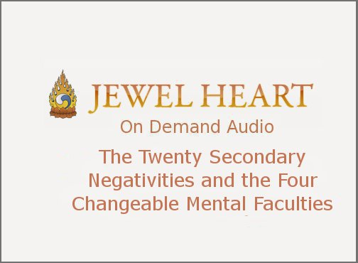 The Twenty Secondary Negativities and the Four Changeable Mental Faculties