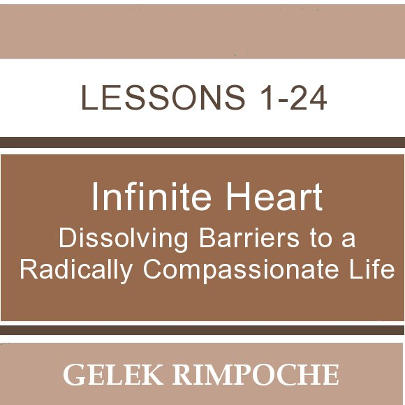 Infinite Heart: Dissolving Barriers to a Radically Compassionate Life