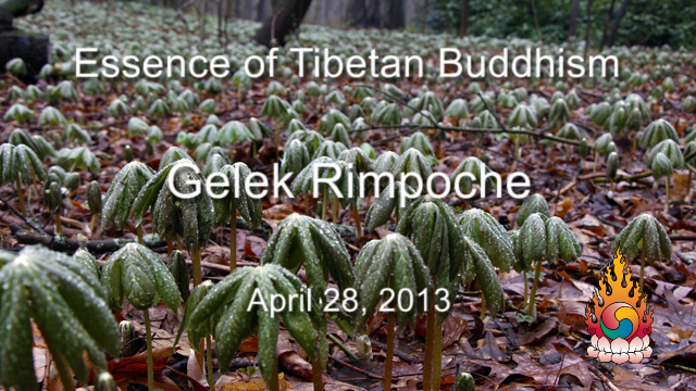 Essence of Tibetan Buddhism 8