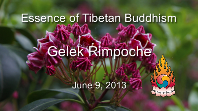 Essence of Tibetan Buddhism 14