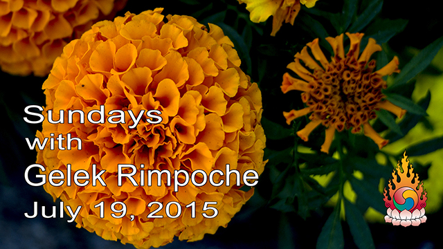Sundays with Gelek Rimpoche 23