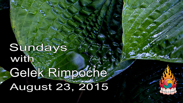 Sundays with Gelek Rimpoche 28