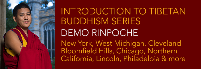 Introduction to Tibetan Buddhism Series with Demo Rinpoche