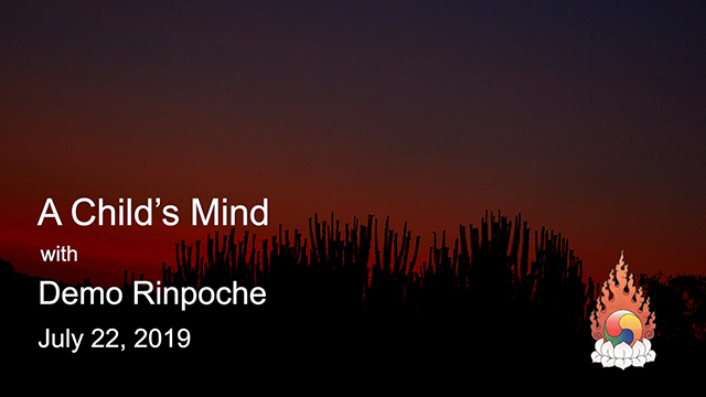 Sunday Talks with Demo Rinpoche 22
