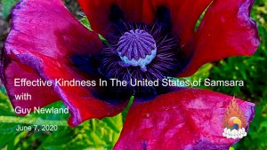 Guy Newland – Effective Kindness