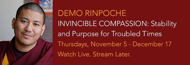 Invincible Compassion - Stability and Purpose for Troubled Times