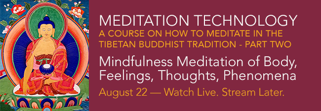Meditation Tech Course on How to Meditate TB Tradition Pt 2 WLSL 2020