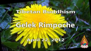 Tibetan Buddhism with Gelek Rimpoche 17