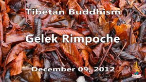 Tibetan Buddhism with Gelek Rimpoche 49