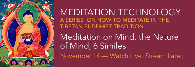 Meditation Tech SERIES on How to Meditate TB Tradition Part 5 November 14 WLSL 2020