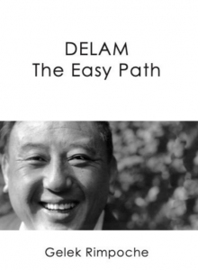 New Arrival! DELAM – The Easy Path